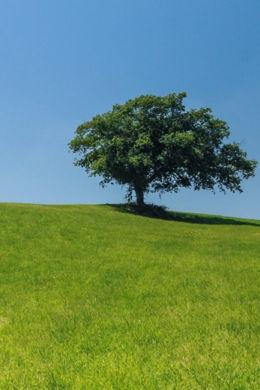 ecologie clermont ferrand