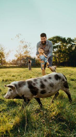 top ferme pédagogiques puy-de-dôme animaux